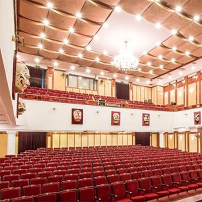 VIETNAM TUONG THEATER